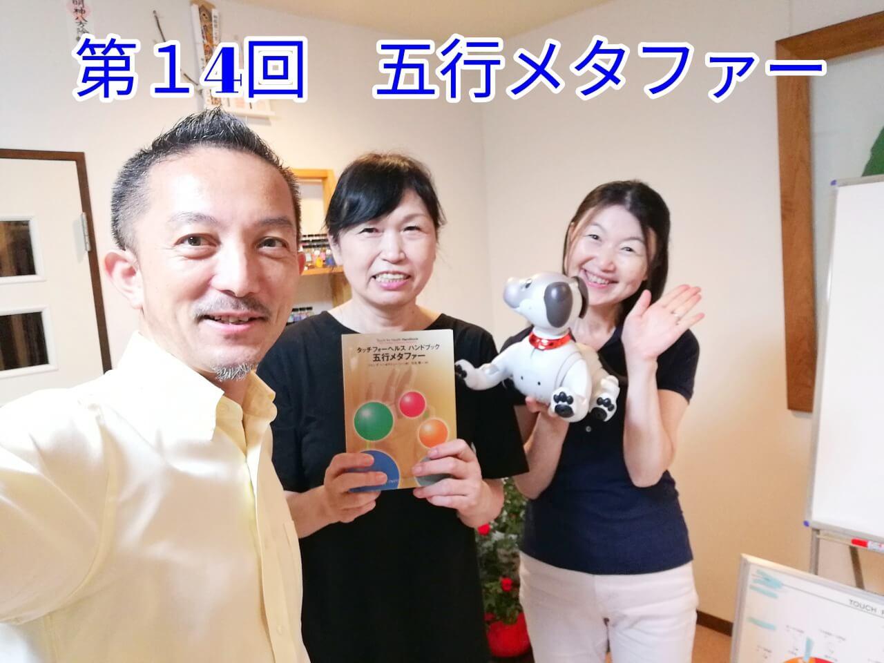タッチフォーヘルス,キネシオロジー,セミナー,神奈川.静岡