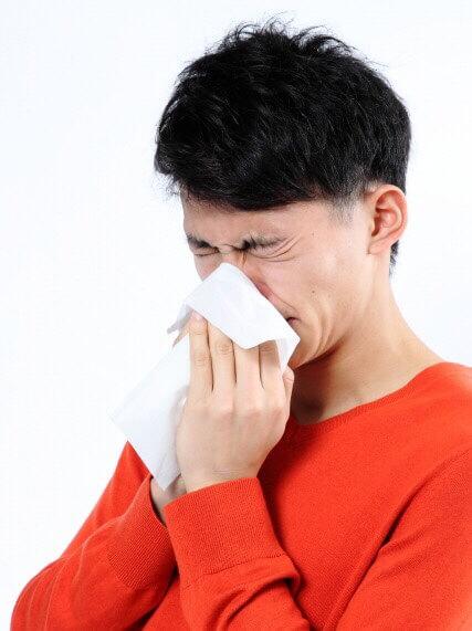 花粉症 杉花粉 ちがさき整体クリィニク